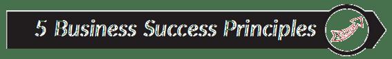 Like a Virgin Book Summary_title_success principles