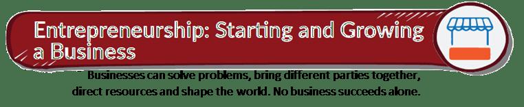Like a Virgin Book Summary_title_Entrepreneurship