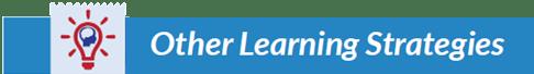 Make It Stick summary_title_learning strategies