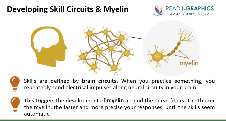 The Talent Code summary_Myelin and skills circuits
