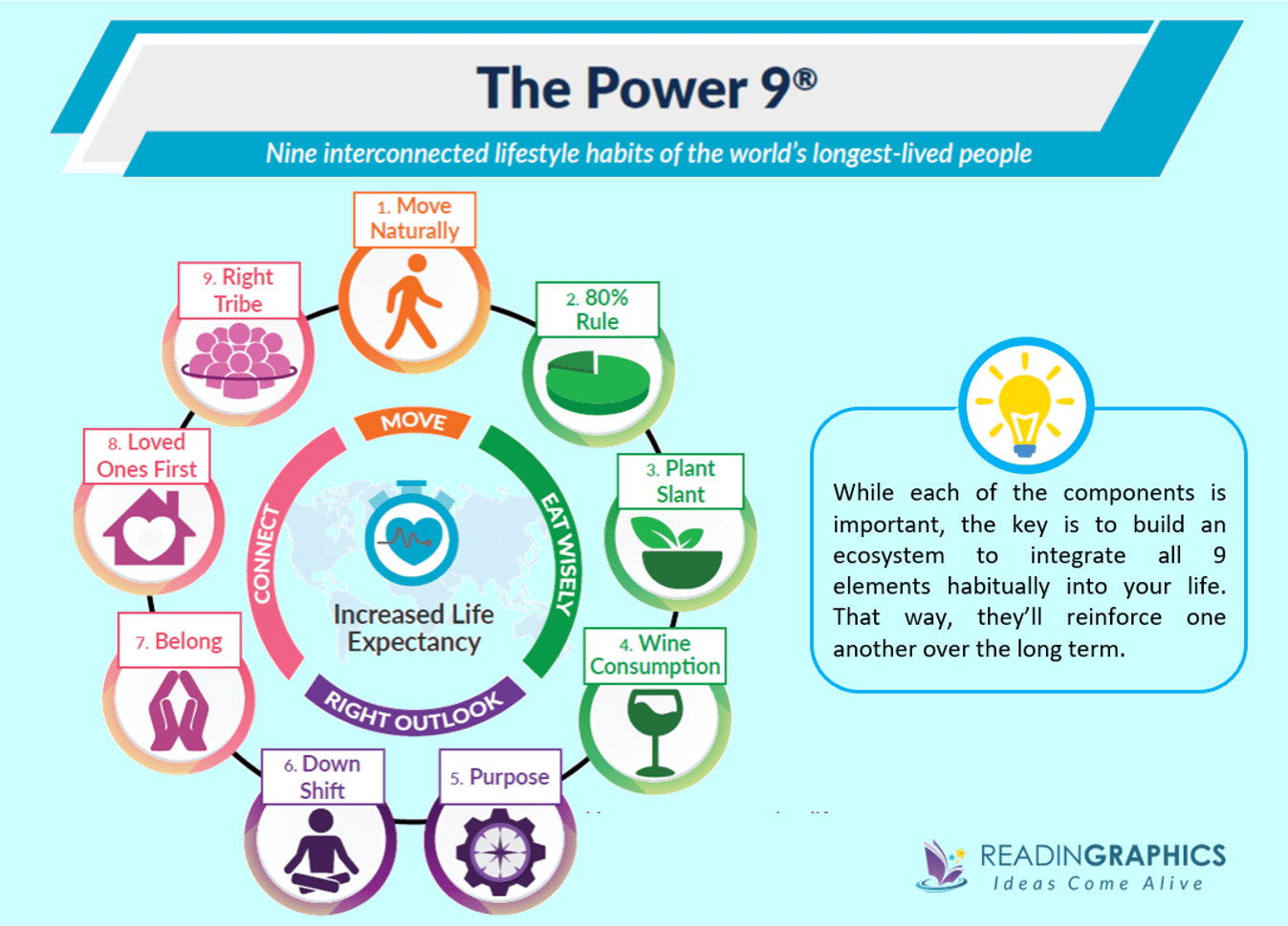 The Blue Zones summary_The Power 9